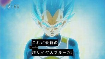 スーパーサイヤジンブルーだ.jpg